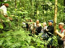caminata selva